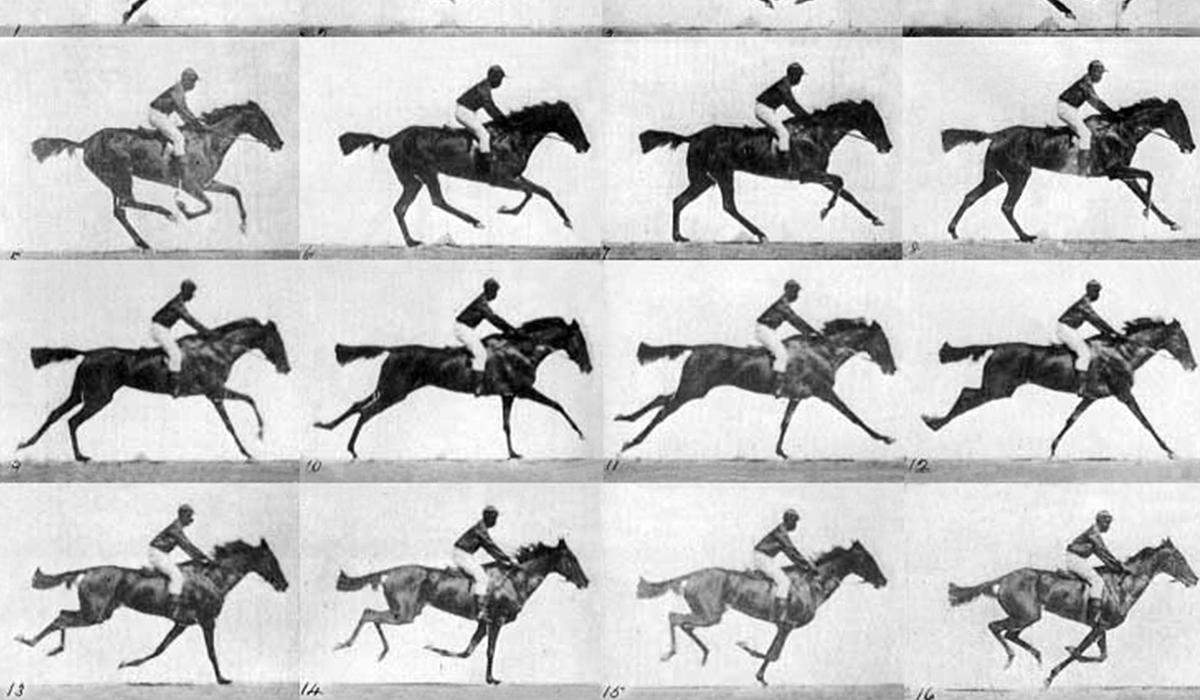 Das schwebende Pferd